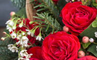 Here's How to Choose Birthday Flowers According to Month